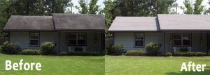 NO-pressure-roof-cleaning-before&after-small-house